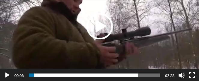 Супер охота на кабана. Ватсап видео.