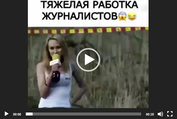 видео приколы для ватсап скачать на телефон бесплатно самые ржачные и смешные до слез русские видео ролики у нас друзья