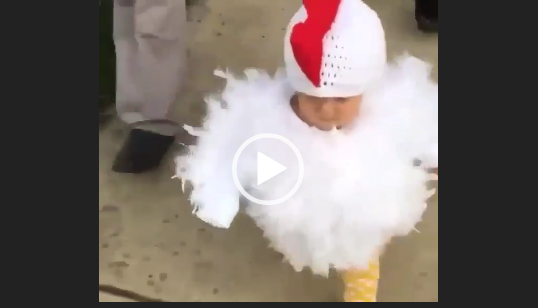 Ребенок цыпленок. Скачать прикол.