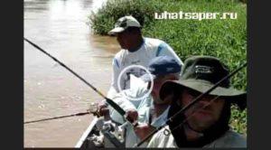 приколы на рыбалке 2018 подборка видео новые, рыбалка видео приколы новые, приколы на рыбалке видео, приколы рыбалки видео бесплатно, приколы на рыбалке 2018 видео, видео приколы про рыбалку