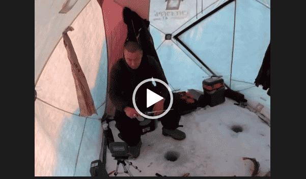 Приколы на рыбалке зимней 2019 скачать на телефон