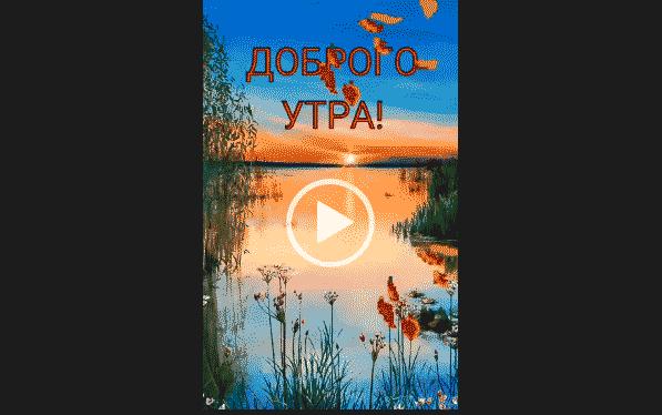 Днем, видео открытку с добрым утром любимый на ватсап