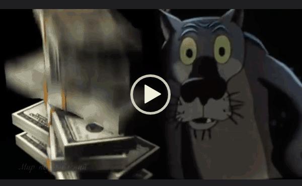 С днем рождения от Волка скачать видео для ватсапа на телефон или компьютер.