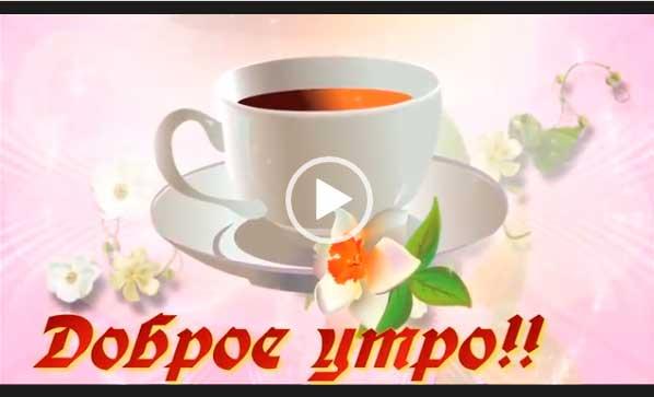 Видео пожелание доброго утра, с добрым утром. Скачать бесплатно на телефон для ватсап.