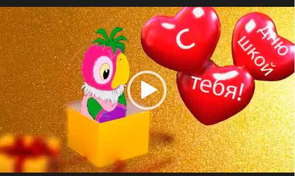Скачать бесплатно короткое видео поздравление с днем рождения. Красивые пожелания на дне рождения от попугая Кеши.