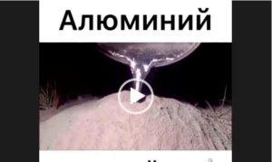 Алюминий залить в муравейник. Интересное видео.
