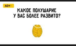 Какое полушарие мозга у вас развито лучше. Видео Тест.