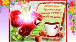 С добрым утром и доброго дня - скачать бесплатно видео открытки.