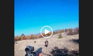 Супер охота на кабана видео. Опасный случай на охоте.