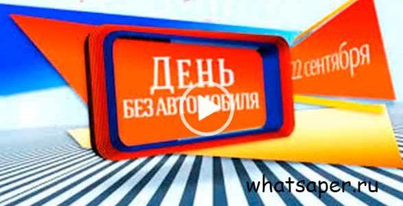 С праздником! День без автомобиля. Видео открытка.