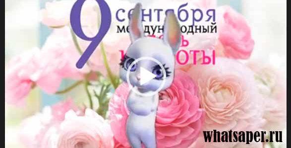 9 сентября. День красоты. С днем красоты. Видео поздравление.
