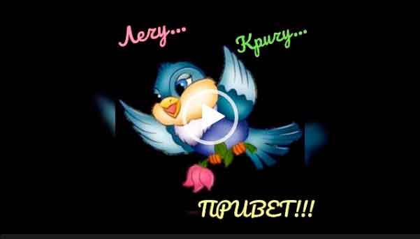 Привет! С добрым утром! Хорошего дня и настроения! Красивые пожелания для друзей!