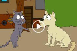 Кот и собака. Смешной мульт. Скачать.