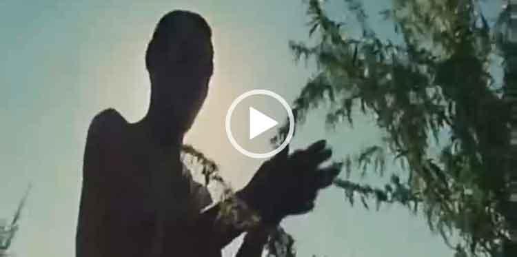 Чуйская долина. Про Чуйскую долину. Невероятное видео.