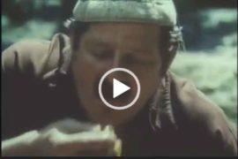 Грибы - пища богов. Прикол про грибы. Вырезка их фильма.