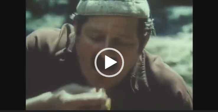 Смешной прикол про грибы скачать видео для ватсапа.
