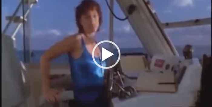Дельфин спас собаку от акулы. Интересное видео. Скачать.
