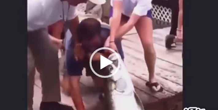 Смешные приколы на рыбалке. Скачать видео.