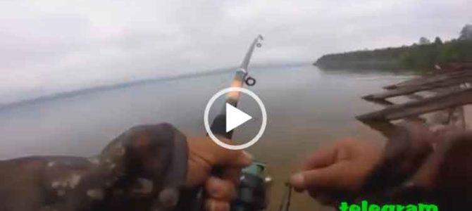 Видео песня про рыбалку. Скачать бесплатно.