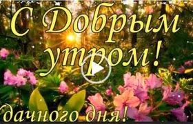 Доброе утро, удачного дня. Красивая открытка. Скачать бесплатно.
